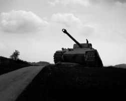 Panther Tank Picture by DaveSheepek