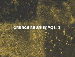 Grunge Brushes Vol. 3 by xara24