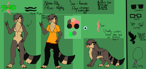 Ally Reference Sheet 2013 by NightyDumbBird