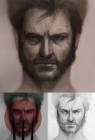Wolverine progress by khuon