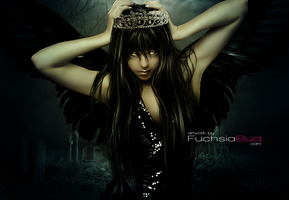 Darkness Angel by FuchsiaBud