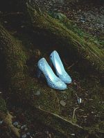 Cinderella Shoes by Costurero-Real