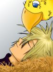 :Cloud and a Chocobo: by emerald-eyez333