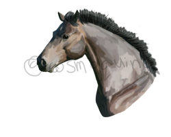 Horse Head by Cosmoquine