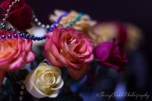Mother's Day Bokeh by Lenore49