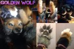 COMPLETE Golden Wolf Partial by Yuki-Moon