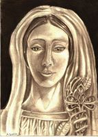 Holly Mother of Jesus by Leptospyrra