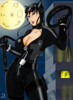 Catwoman By Bfetish by sweetchorizo