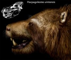 Harpagolestes uintensis by viergacht
