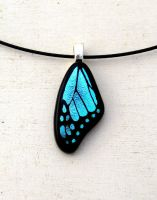 Blue Butterfly Wing Mini Fused Glass by FusedElegance