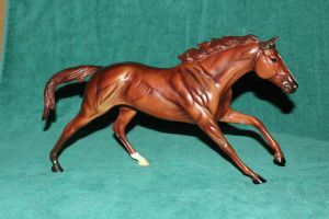 Breyer WEG Woodburn Stock1 by Lovely-DreamCatcher
