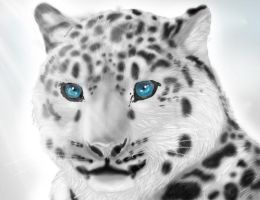 Snow Leopard by Rico-dawg