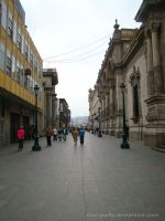 Center of Lima City- Street by fiori-party