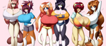 2014 A Sextet of Kitties by Neme303