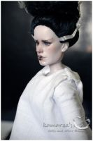 The Bride Of Frankenstein 2 by kamarza