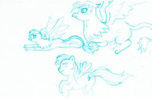 Rainbow Feather's Family in Flight by Eande by Q99