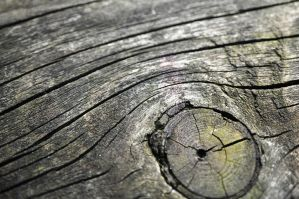 Wood by jarry1215