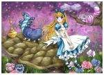 Alice in the Wonderland by 0Febris0