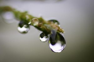 Water drops III by PascalsPhotography