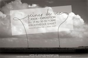 Exposition by C-Jook