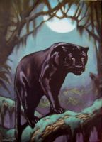 Panther 1 by spoof-or-not-spoof