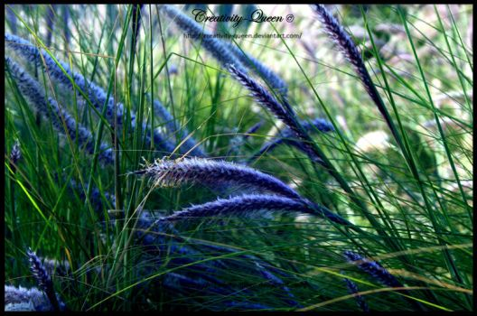 .Natural Symphony. by Creativity-Queen