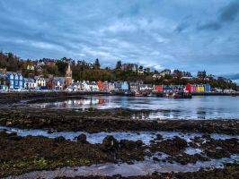 Tobermory Harbour by macrodger