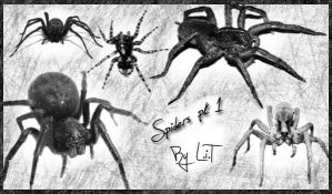 Spiders Pk 1 by LiTdesign