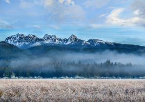 Pitt Meadows by dashakern