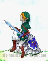 .Aftermath: or, Link's Tired. by fatpuppy