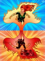 The two sides of the Phoenix by JeanSebastien-P
