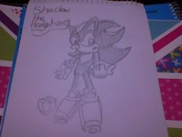 Shadow the Hedgehog by Saradema
