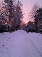 winter by 99andreea