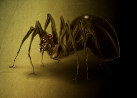 Anansi by trowicia