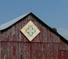 Rose of Sharon Barn Quilt by justamom