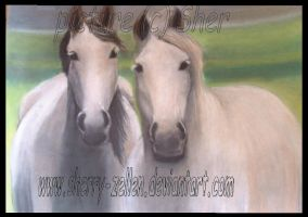 .:two horses:. by Sherry-Zellen