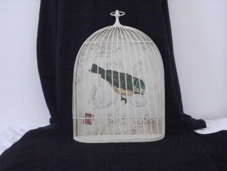 french bird cage stock 7 by erratic-stock
