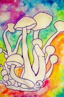 Mushrooms by DreamsOfDownfall