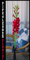 Pipe Cleaner Gladiolus by teblad
