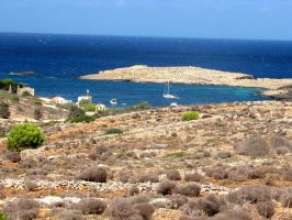 St. Mary's Bay - Comino by Faunamelitensis
