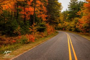 HDR Autumn Road by Nebey