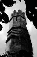 The Grey Tower... by EarthHart