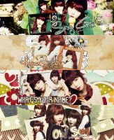 4 pack Cover Zing HyunA by Sumi by ParkSumi