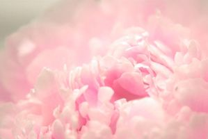 Clouds of Pink by Lovell-SimonsJanet
