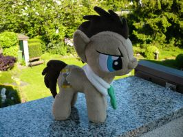 Dr. Whooves Plushie V2 by navkaze