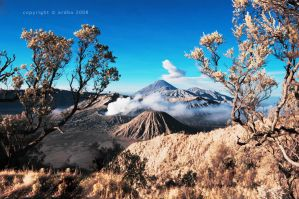 Beautiful Bromo II by ardh0