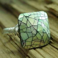 Mosaic Shell. Ring by contrariwise