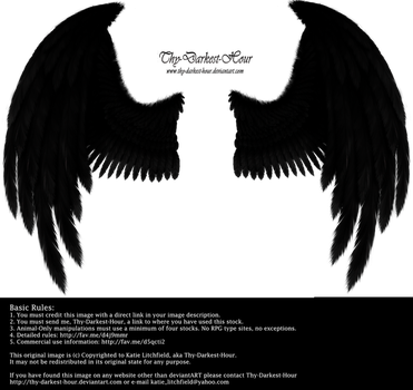 Winged Fantasy - Black by Thy-Darkest-Hour