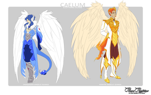 PR: Caelum Clothing Guide by ophiurida
