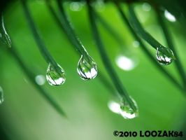 a little droplets... by loozak84